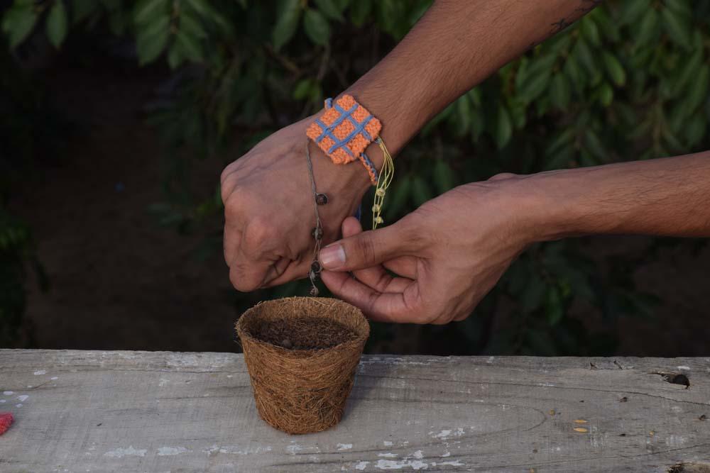 Seed Rakhi (15)