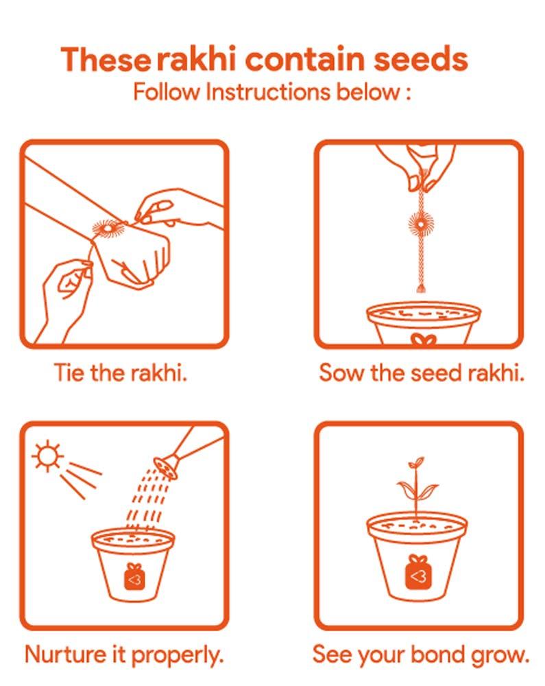 Seed Rakhi (1)_1