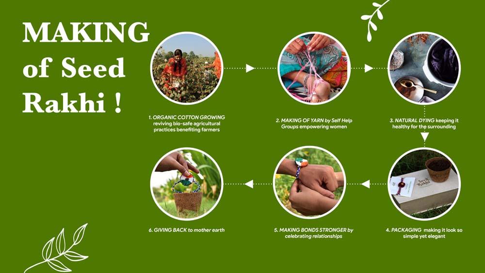 Seed Rakhi (4)