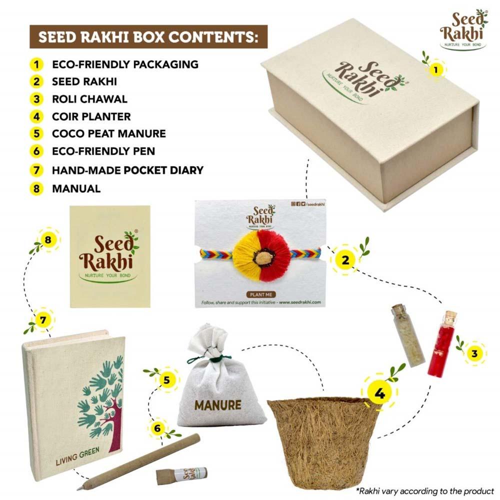Seed Rakhi (7)